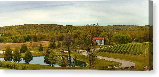 Canvas Print featuring the photograph Chandler Hill Patio View by David Coblitz