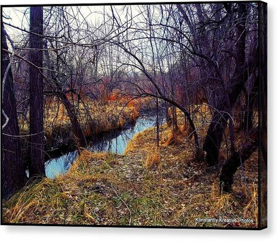 Chaotic Tranquility Canvas Print by Misty Herrick