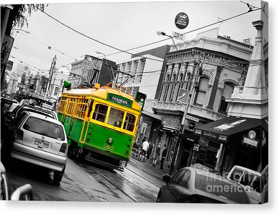 Swan Canvas Print - Chapel St Tram by Az Jackson