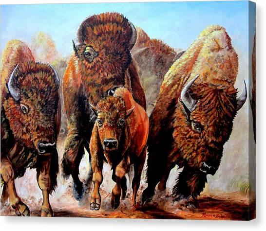 Charging Buffalo Canvas Print