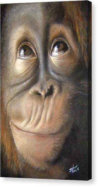 Charles The Monkey Canvas Print by Michelle Iglesias