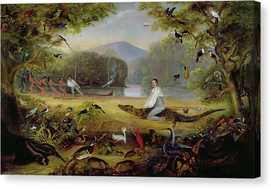 Toucans Canvas Print - Charles Waterton Capturing A Cayman, 1825-26 by Captain Edward Jones