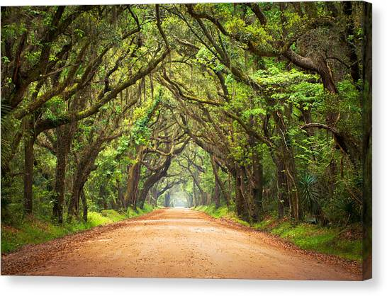 Roads Canvas Print - Charleston Sc Edisto Island - Botany Bay Road by Dave Allen