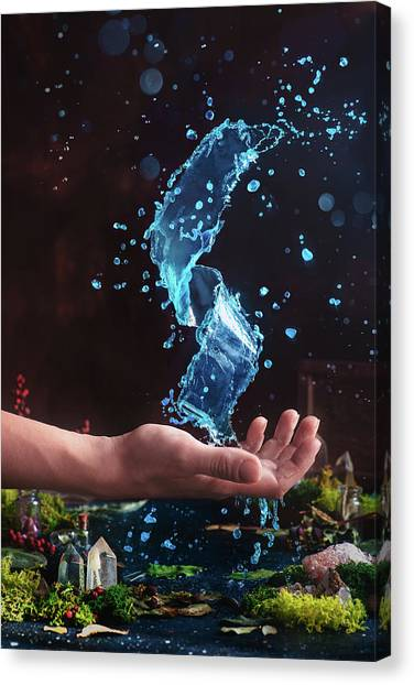 Liquids Canvas Print - Charm Of Clear Water by Dina Belenko
