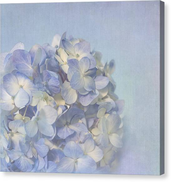Charming Blue Canvas Print