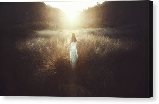 Chase The Sun Canvas Print by Terry F