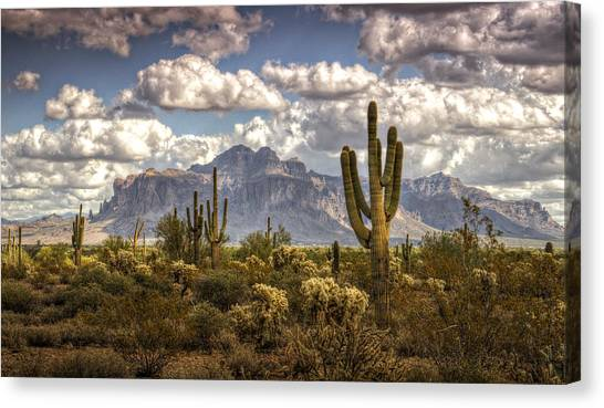 Sonoran Desert Canvas Print - Chasing Clouds Two  by Saija  Lehtonen