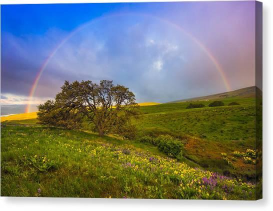 Chasing Rainbows Canvas Print