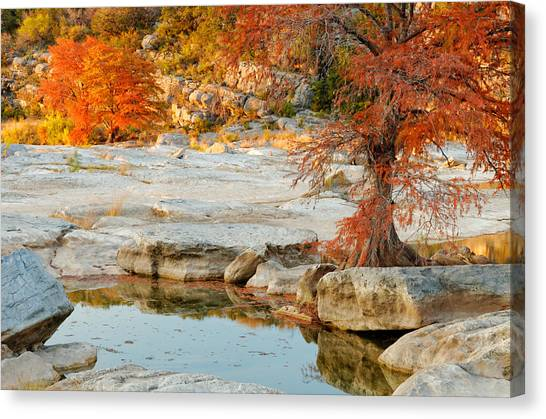 Austin Texas Canvas Print - Chasing The Light At Pedernales Falls State Park Hill Country by Silvio Ligutti