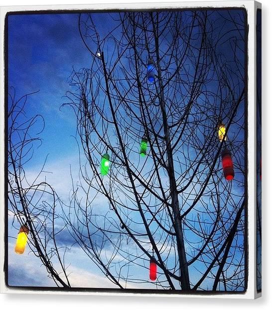 Law Enforcement Canvas Print - Tree Lights by Darren O' Dea