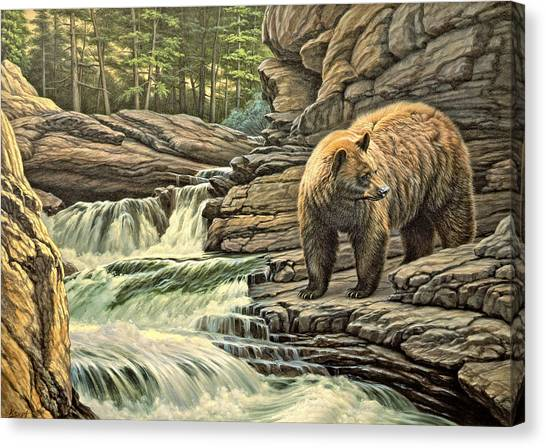 Yellowstone Canvas Print - Checking Downstream       by Paul Krapf