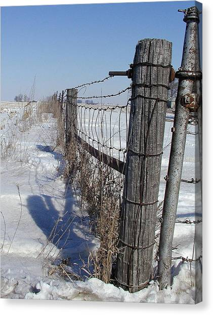 Checking The Fenceline Canvas Print
