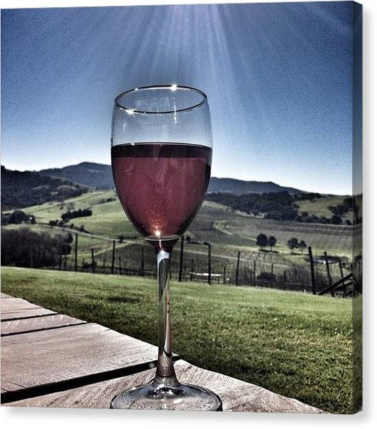Vineyard Canvas Print - Cheers! #rose #wine #sunshine #country by Pix Jax