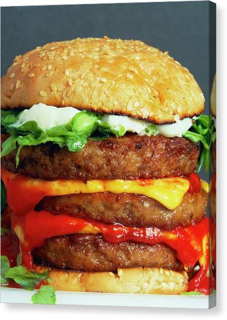 Ketchup Canvas Print - Cheeseburger by Martin Bond/science Photo Library