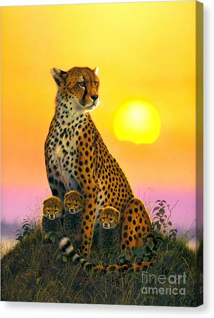 Cheetah And Cubs Canvas Print
