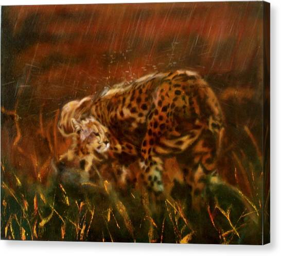 Cheetah Family After The Rains Canvas Print