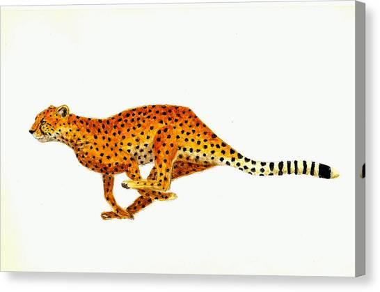 Cheetahs Canvas Print - Cheetah by Michael Vigliotti