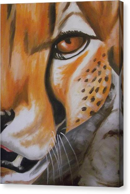 Cheetah Up Close Canvas Print by Scott Dokey
