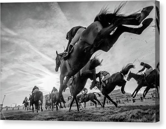 Horseracing Canvas Print - Cheltenham Jumps Festival by Sharon Lee Chapman