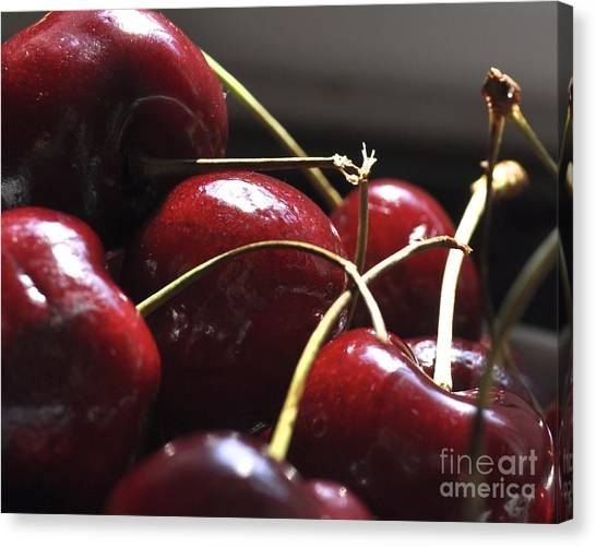 Cherries Close Up Canvas Print