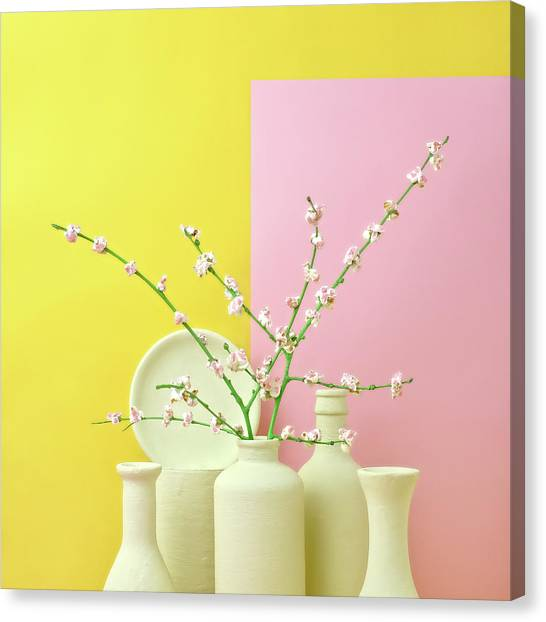 Cherry Blossom Popcorn In Monochromatic Canvas Print by Juj Winn