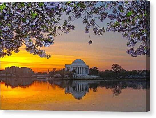 Cherry Blossom Sunrise Washington D.c. Canvas Print