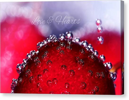 Cherry Fizz Hearts With Love Canvas Print