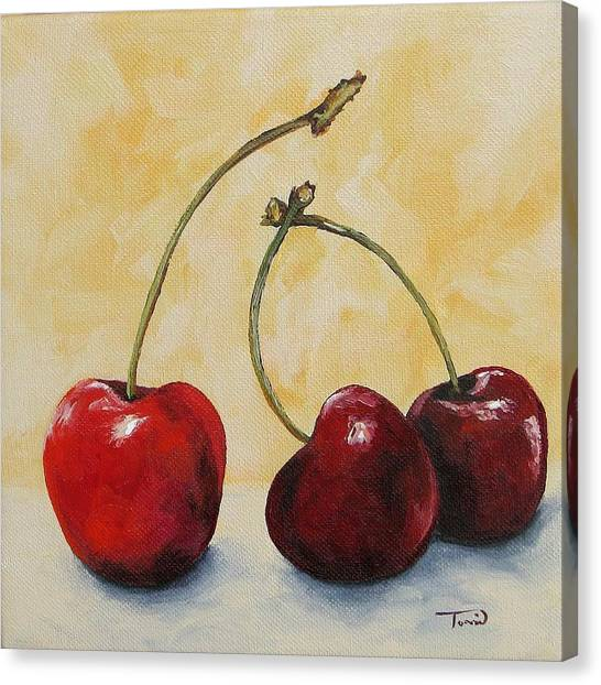 Cherry Trio Canvas Print by Torrie Smiley