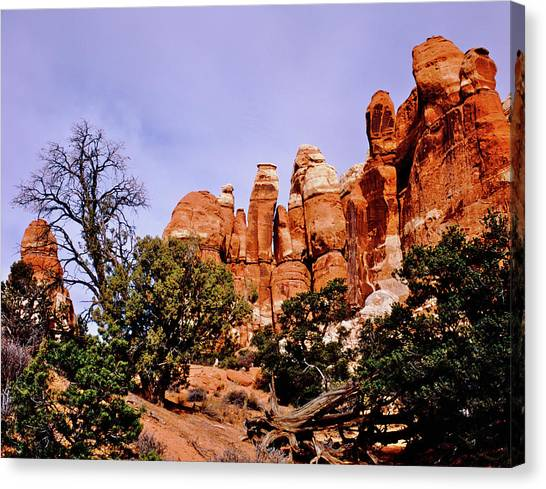 Chesler Park Pinnacles Canvas Print