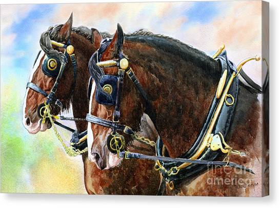 Chestnut Shire Horses Canvas Print by Anthony Forster