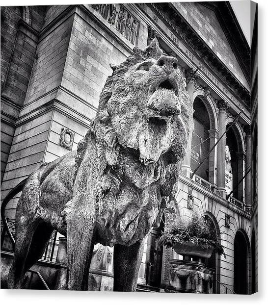 Urban Canvas Print - Lion Statue At Art Institute Of Chicago by Paul Velgos