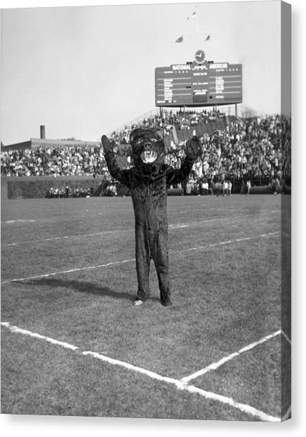 Chicago Bears Canvas Print - Chicago Bears Mascot In Front Of Wrigley Field Scoreboard by Retro Images Archive