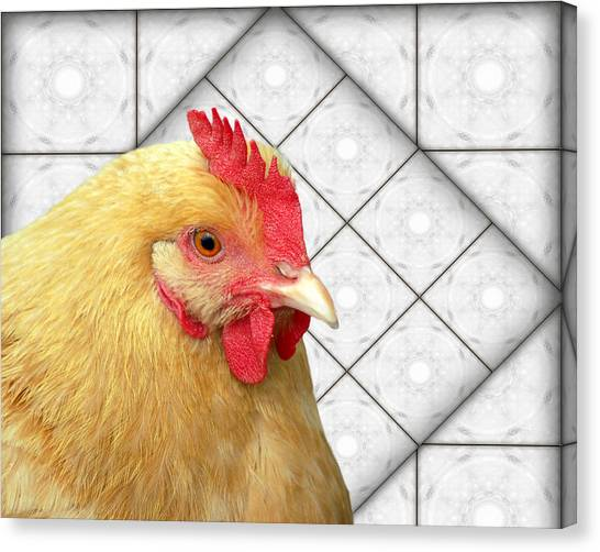 Chick-a-dee In The Kitchen Canvas Print