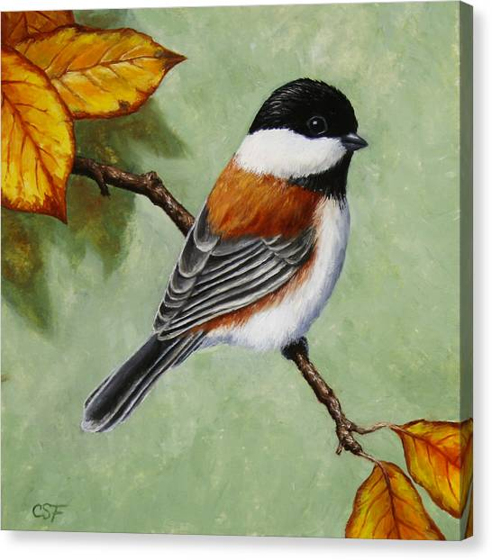 Chickadees Canvas Print - Chickadee - Autumn Charm by Crista Forest