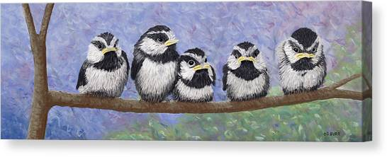 Chickadee Chicks Canvas Print