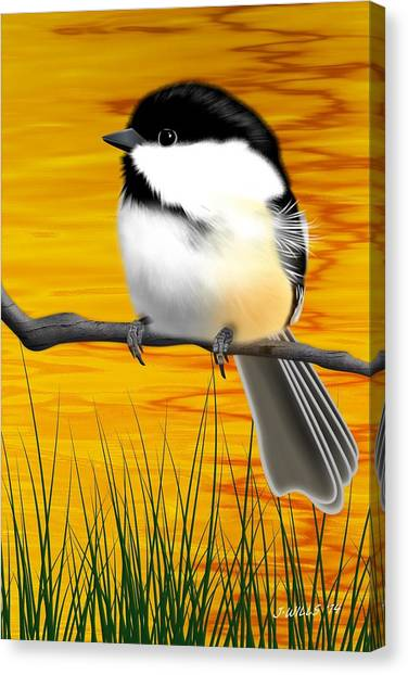 Chickadee On A Branch Canvas Print