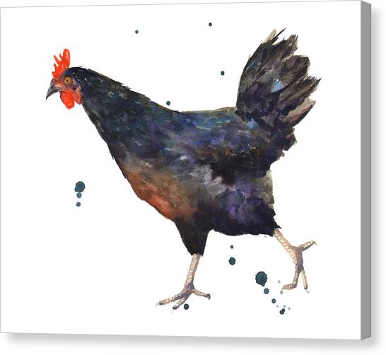 Chicken Canvas Print - Chicken Chase by Alison Fennell