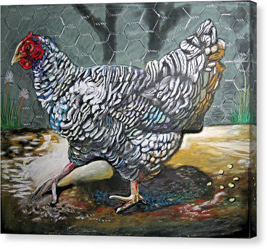 Chicken In The Pen Canvas Print by Mike Benton