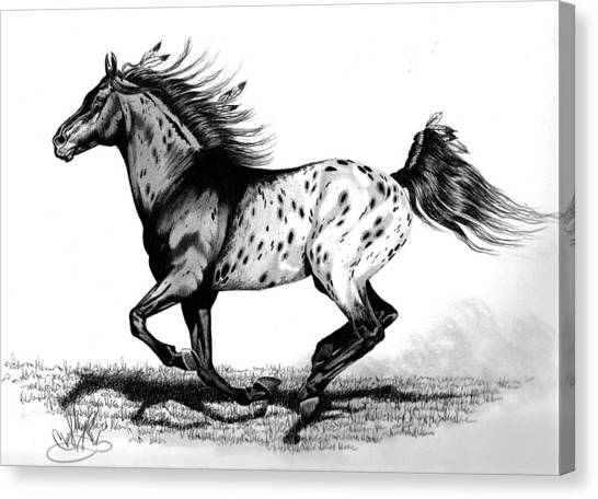 Chiefton Canvas Print