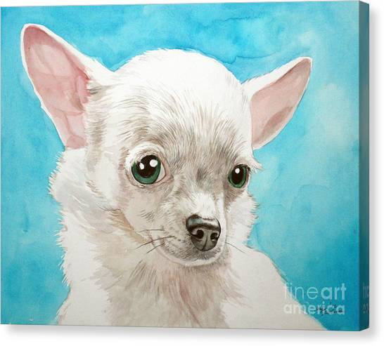 Chihuahua Dog White Canvas Print