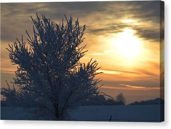 Chilly Sunrise Canvas Print