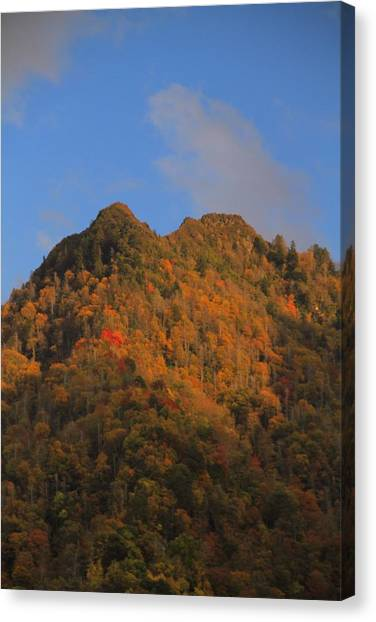 Chimney Tops Canvas Print - Chimney Tops In Smoky Mountains by Dan Sproul