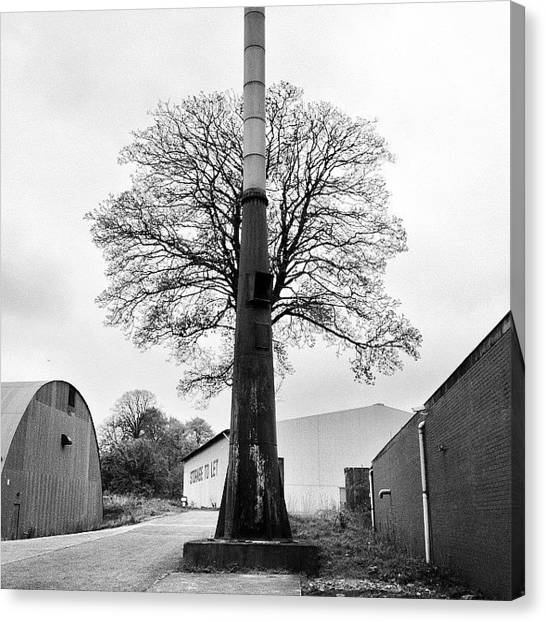 Steampunk Canvas Print - Chimney Tree by Carlos Macia Perez