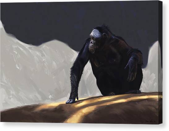 Primates Canvas Print - Chimp Contemplation by Aaron Blaise