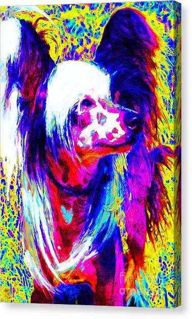 Chinese Crested Dog 20130125v1 Canvas Print by Wingsdomain Art and Photography
