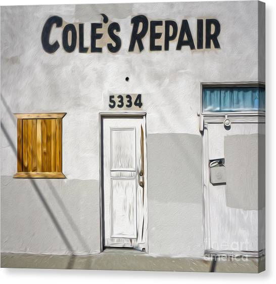 Chino - Coles Repair Canvas Print by Gregory Dyer