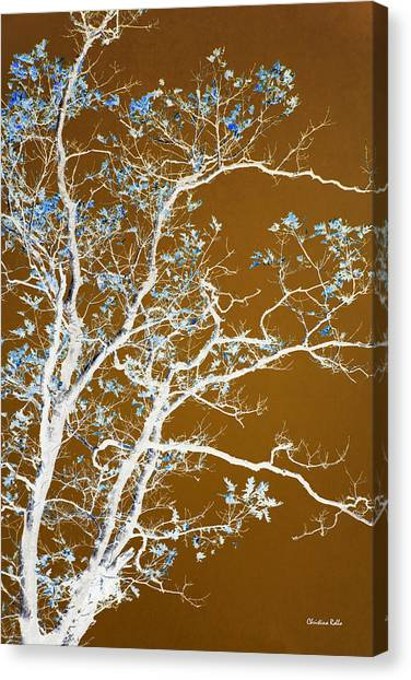 Canopy Canvas Print - Chocolate Forest Tree Art by Christina Rollo