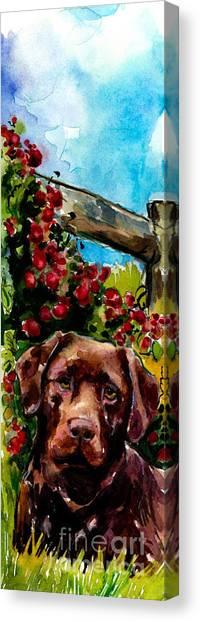 Chocolate Labrador Retriever Canvas Print - Chocolate Raspberry Fields by Molly Poole