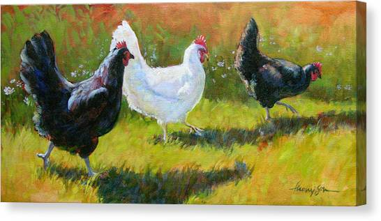 Chicken Farms Canvas Print - Chorus Girls  by Tracie Thompson