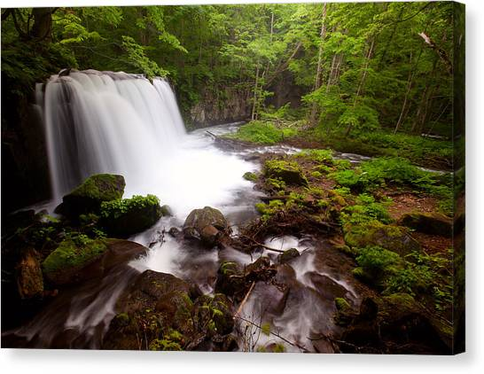 Canvas Print featuring the photograph Choushi - Ootaki Waterfall In Summer by Brad Brizek